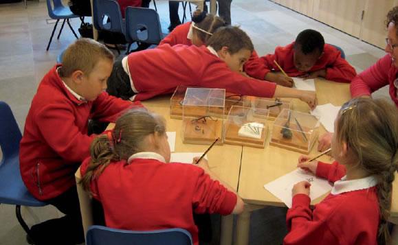 Education Key Learning